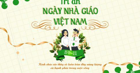 Chúc mừng ngày Nhà giáo Việt Nam 20/11: Lời chúc từ OES !